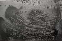 http://martinheuser.com/files/gimgs/th-43_43_charcoaloncanvas-jellyfish.jpg